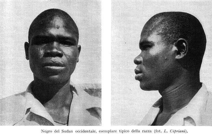 Caucasoid Race | The Birth of the Caucasian Race | Beyond Highbrow - Robert Lindsay