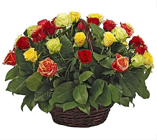 Букет в корзине 51 роза. Композиция Корзина из оранжевых, красных, фисташковых и желтых роз 50 см. (Аргентина)