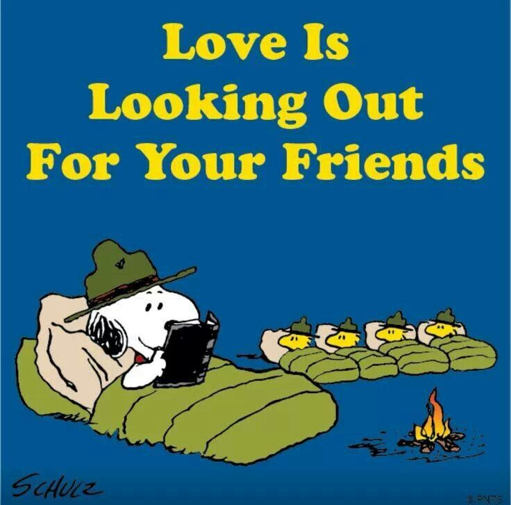 238 Best Images About All Things Snoopy On Pinterest