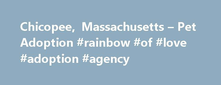 Chicopee, Massachusetts – Pet Adoption #rainbow #of #love #adoption #agency http://chicago.remmont.com/chicopee-massachusetts-pet-adoption-rainbow-of-love-adoption-agency/  Search and see photos of adoptable pets in the Chicopee, Massachusetts area Find a pet to adopt! Cities, Towns, and/or Counties We Serve: Rainbow Rescues Inc serves all of Massachusetts and the surrounding areas. About Our Rescue Group: Rainbow Rescues Inc is a non-profit 501(c)3 rescue based out of Massachusetts. We are…