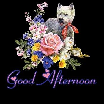Good Afternoon sister and all, have a joyful afternoon.♥★♥.