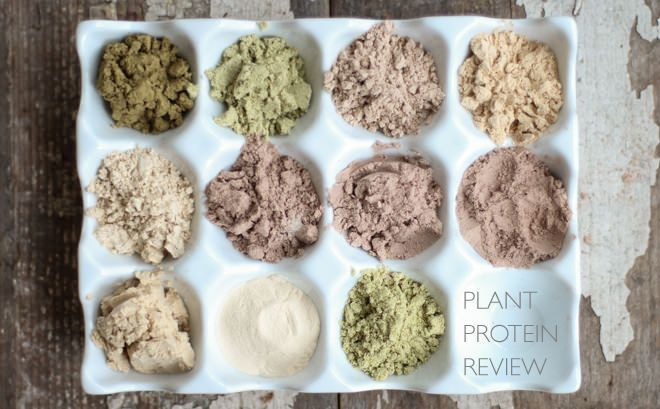 Guide to Plant-based Protein Supplements // nutritionstripped.com