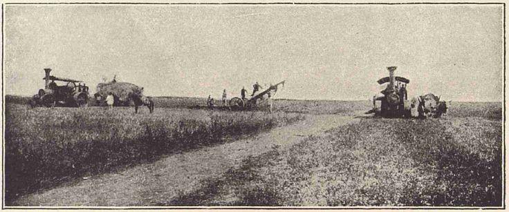 1930 Arat cu pluguri mecanice - Comuna Bordei Verde, Brăila - Wikipedia