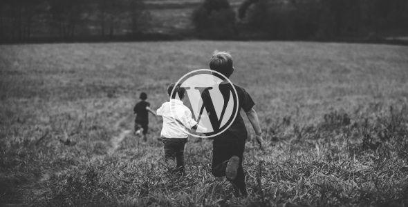 Primii pasi cu WordPress