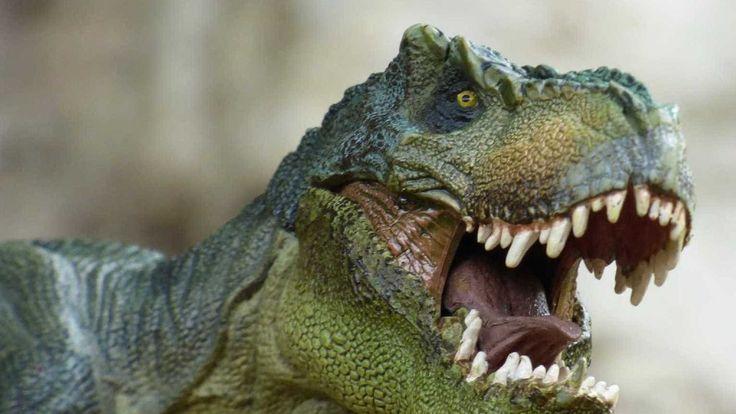 InfoNavWeb                       Informação, Notícias,Videos, Diversão, Games e Tecnologia.  : Assustador? Cientistas revelam como o Tiranossauro...