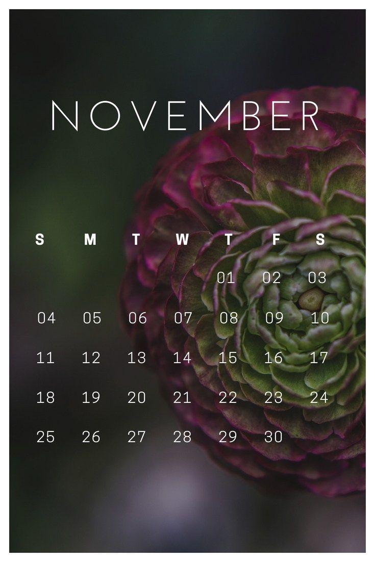 November 2018 Iphone Calendar Wallpaper Calendar Wallpaper November Wallpaper Lock Screen Wallpaper Iphone