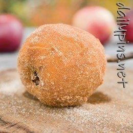 camping food: Camps Ideas, Desserts, Cinnamon Sugar, Apples Pies, Camps Recipes, Camping Foods, Campfires Recipes, Sticks, Camps Food