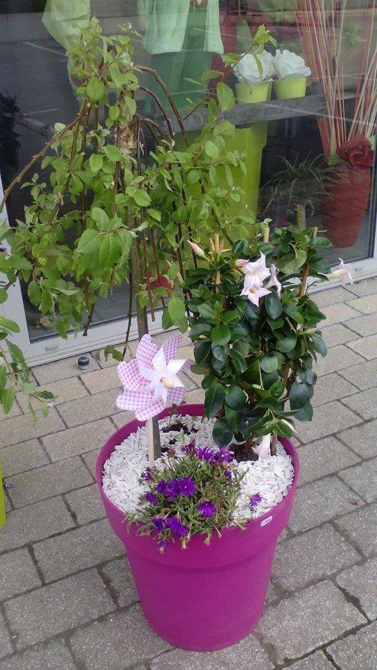 le chant des fleurs fleuriste franois besancon pirey serre les sapins pouillez les vignes chemaudin