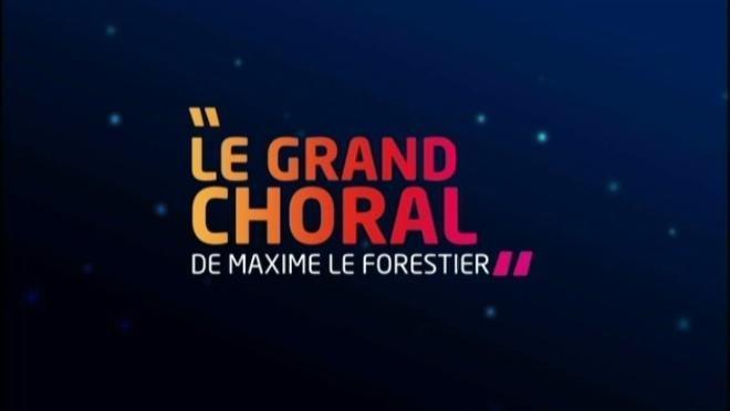 Le Grand Choral de Maxime Le Forestier - Les Nuits de Champagne à Troyes le 03 novembre 2012 - France3 Champagne-Ardenne