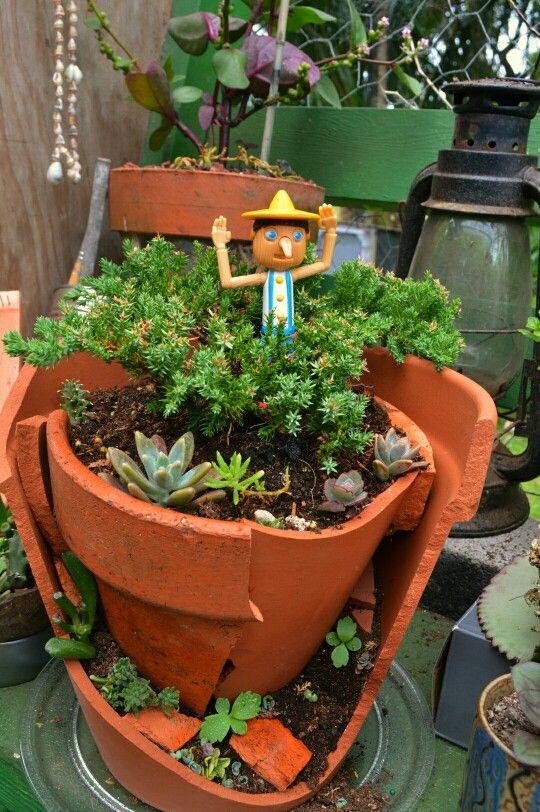 Pinocchio's Garden
