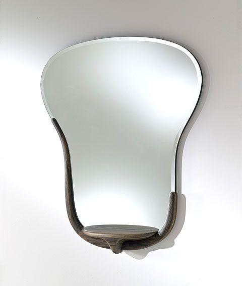 Espejo Snake - Mirror Snake