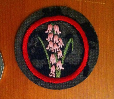 Girl Guide Pre 1940's Felt Patrol Badge Patch