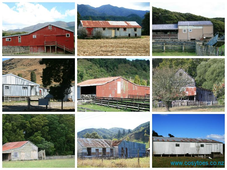 Wool sheds in New Zealand. Where the shearing happens. www.cosytoes.co.nz