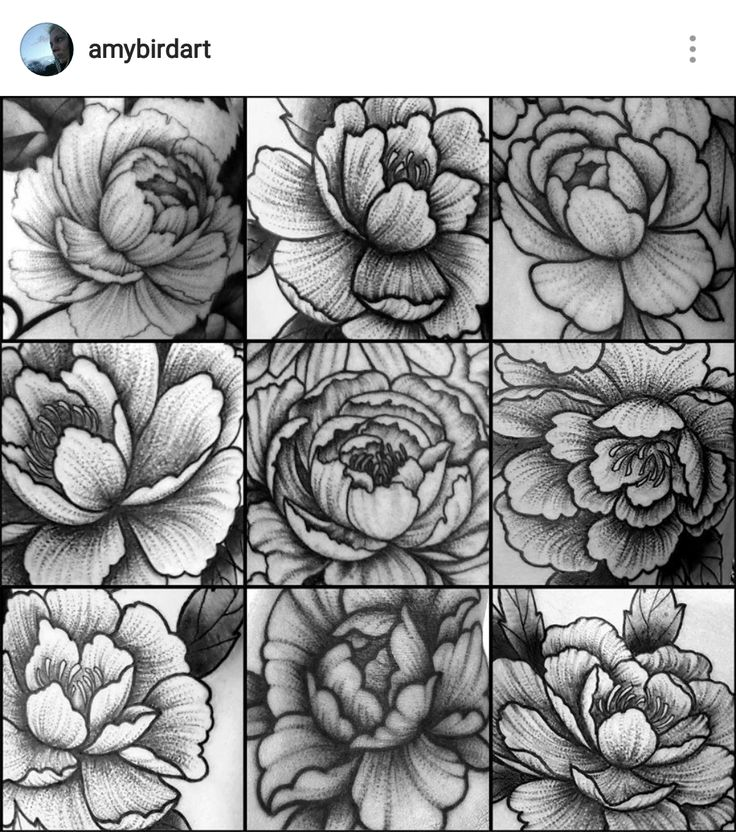 Blackwork dotwork stippling peony flower tattoos by Amy Williams Tattoo