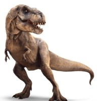 Tyrannosaurus rex is arguably the most famous dinosaur of them all. Tyrannosaurus was the last...