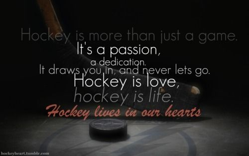 If you dont think this quote is true, then I don't think you are a hockey fan! #NHL #AHL