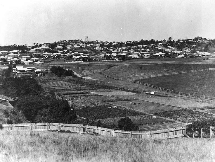 View from Waterworks Road over Chinese market gardens along Ithaca Creek. Water tower in distance on Paddington Heights. (Description supplied with photograph). The gardens and fields can be seen in the valley over the fence in the foreground. Houses and the water tower are visible in the far distance.
