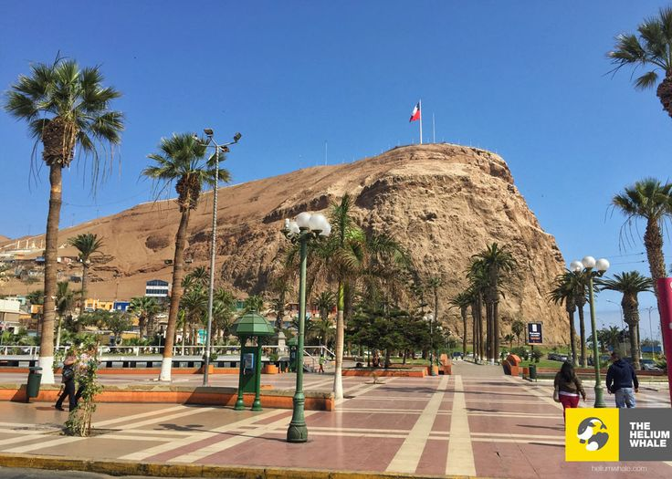 Photography - Arica, Chile - 2015