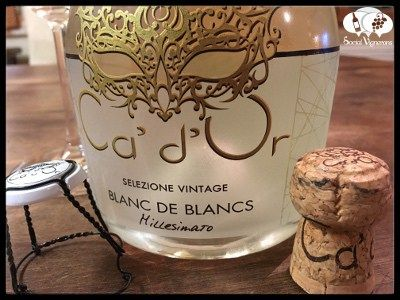 Score 88/100 Wine review, tasting notes, rating of2016 Ca d'Or Blanc de Blancs, Italy. Description of aroma, palate profile, flavors. Join the experience.