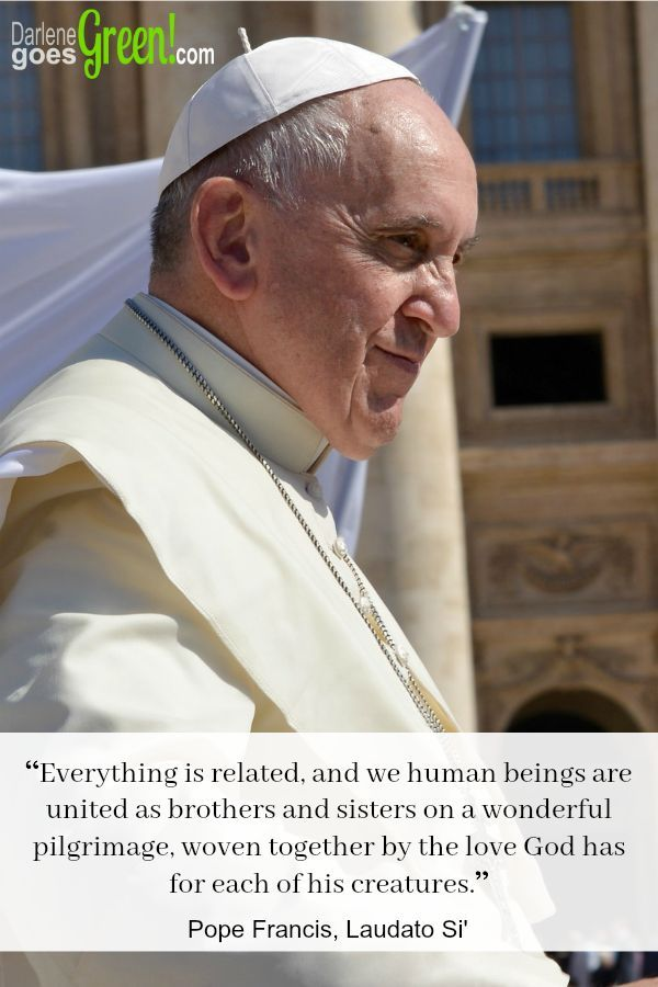 Pope Francis Encyclical Laudato Si Study Series A Universal Communion Pope Francis Inspirational Catholic Quotes Catholic Quotes