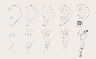 "How to Draw Faces by Meow Meows 9/10 ""The top half of the image shows a step-by-step drawing of the ear from the side of the head, while the other shows the ear from the front. As with everything else, ears come in all shapes, but this is their basic construction. I also included piercings and stretched ears. Remember that these do affect the shape because they pull on the ear."""