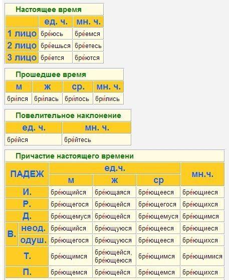 Gallery.ru / Фото #44 - Правила русского языка и математики в картинках - Vladikana