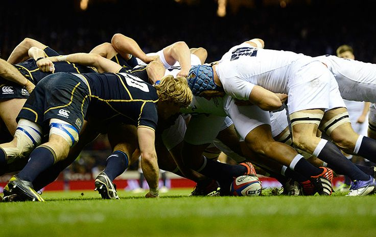 England and Scotland take each other on in the Beast with Thirty Two Legs.