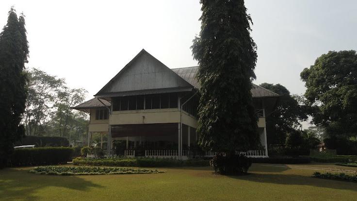 Rungagora Tea Estate : Assam (Jorehaut Tea Company)