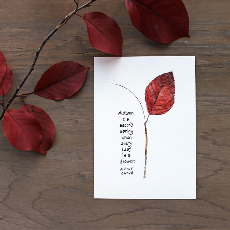 Autumn Leaf and Camus Quote  Keep the quote and change up the image with other leaf prints/stamp/rubbing