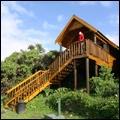 Forest cabin: Tsitsikamma National Park