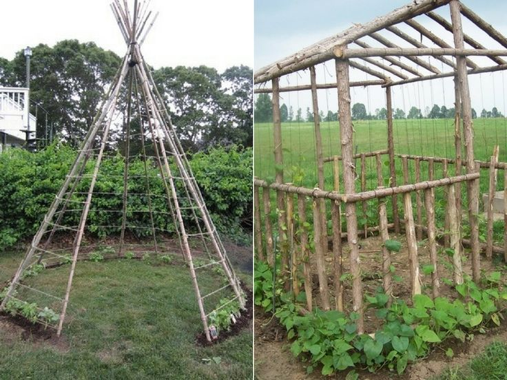 170 best @permaculture images on Pinterest Gardening, Permaculture