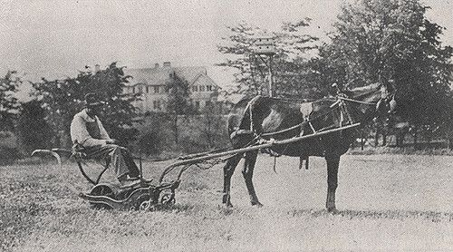 """This image from the June 1918 Norwester magazine shows Charlie Holt driving a horse drawn mower across Miller Park. Mr. Holt was a well-known figure in the Upper Arlington community who helped mow the parks and plow the streets. He would frequently give children rides on the mower pulled by his mule named Jenny. Children of the village were also fond of riding with him on the snow plow, which was described in the book History of Upper Arlington as having """"a V-shaped platform and steel ru..."""