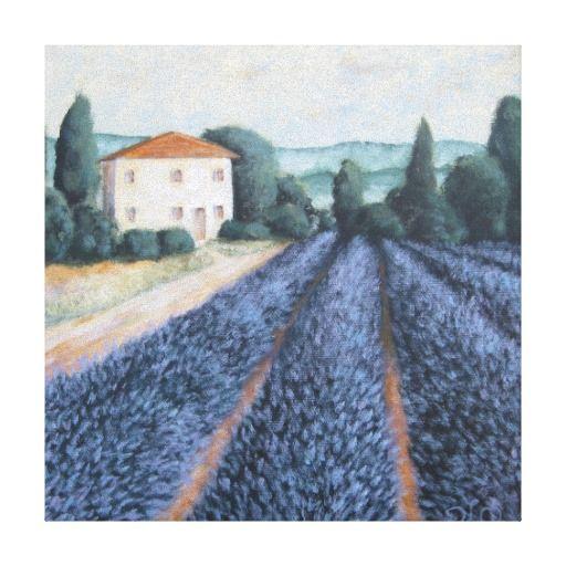 Lavender Fields Canvas Prints
