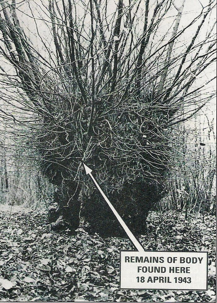 """Who put Bella in the witch elm? In 1943 the remains of a murdered woman were found, stuffed into a hollow tree. The graffiti """"who put Bella in the witch elm?"""" has been appearing in the area ever since. The question has never been answered, though theories of black magic and espionage have been put forward. - Click for story"""