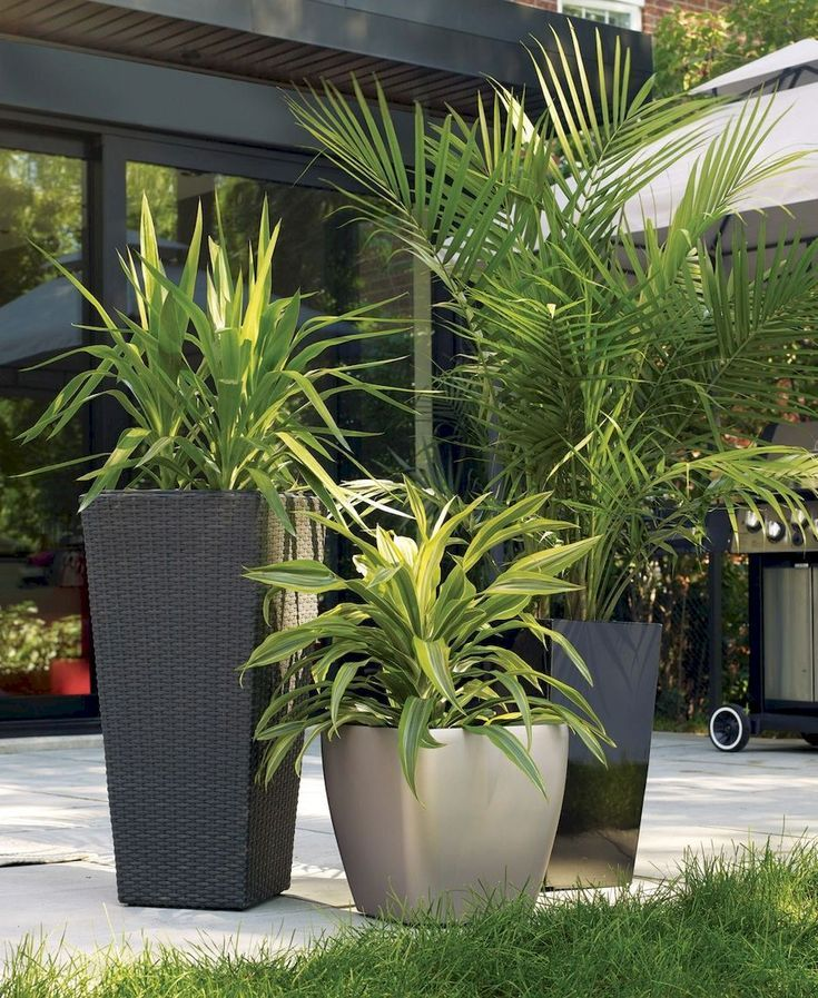 Jardinières préfabriquées modernes uniques pour rendre votre extérieur élé…