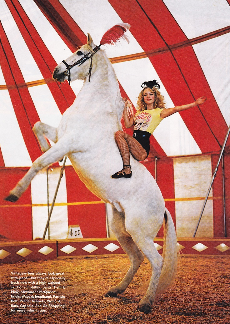 Image result for circus horse