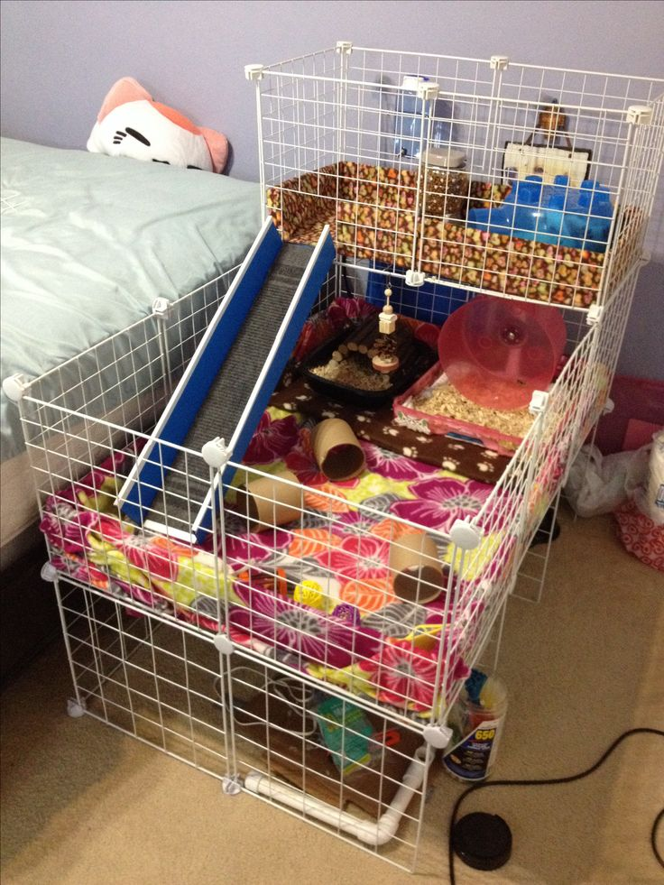 1000 ideas about hedgehog cage on pinterest hedgehogs for How to make a cheap guinea pig cage