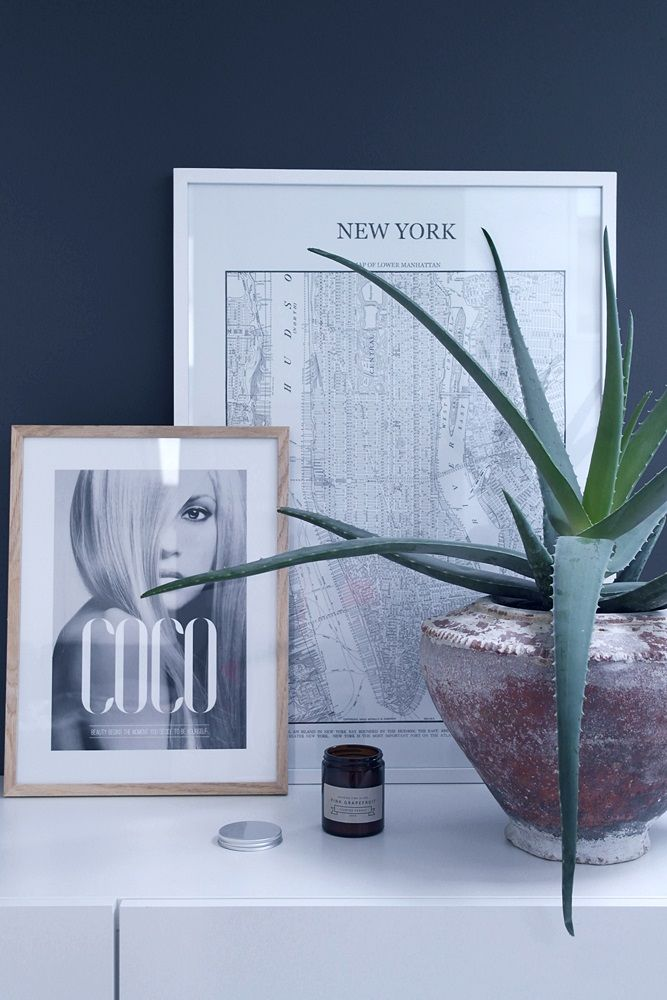 Ramat In Coco & New York