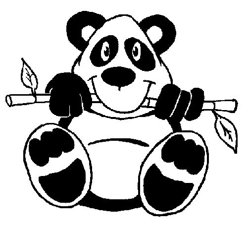 Best 25 Oso panda para dibujar ideas on Pinterest  Pandas dibujo