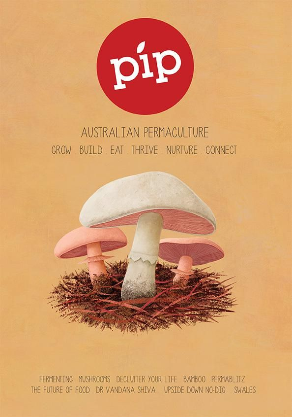 Revealing... The cover of Pip #3! #pipmag #permaculture #australia