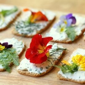 Edible flower canapés with herbed cream cheese