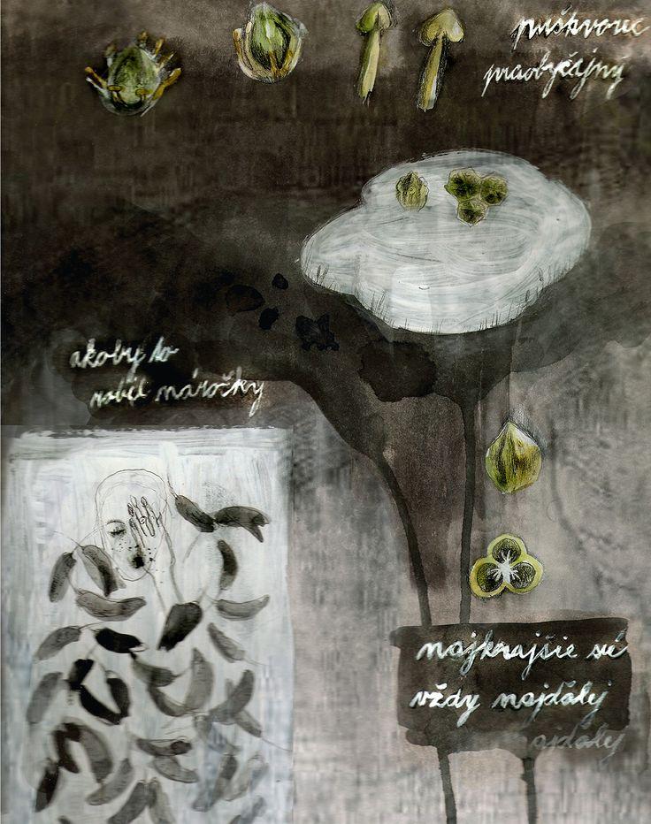 https://www.behance.net/gallery/26409865/Natalia-Kupcokova