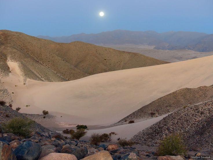 Dunas de Saujil, dpto. Tinogasta, prov. de Catamarca, Argentina
