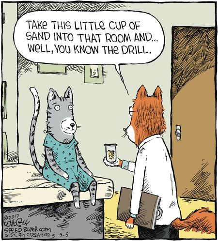 Speed Bump by Dave Coverly for Sep 5, 2017 | Read Comic Strips at GoComics.com