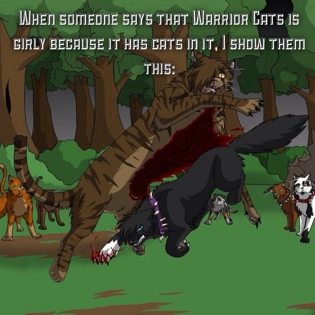When someone says Warrior Cats is girly because it has cats in it, I show them this: