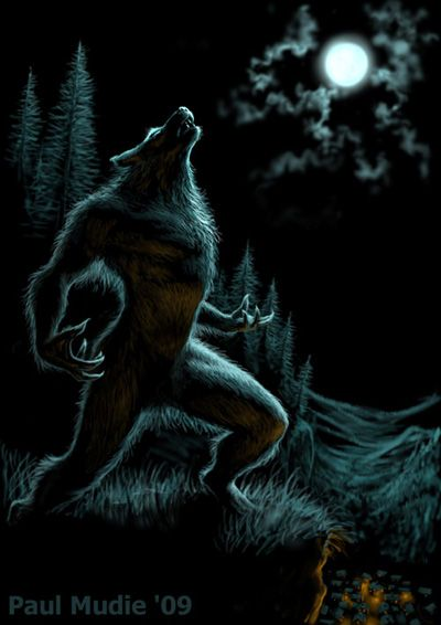In modern culture, the werewolf is believed to howl at the moon and be transformed during a full moon. Description from pinterest.com. I searched for this on bing.com/images