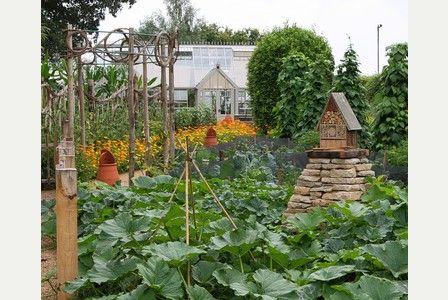 Gardening: Alan Down visits the gardens at Le Manoir aux Quat'Saisons - The Heritage Garden. Potager (ornamental vegetable/kitchen garden) - Le Manoir Aux Quat'Saisons, Oxfordshire