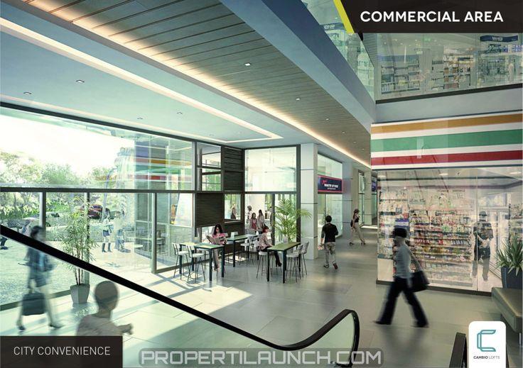 Cambio Lofts Commercial Area