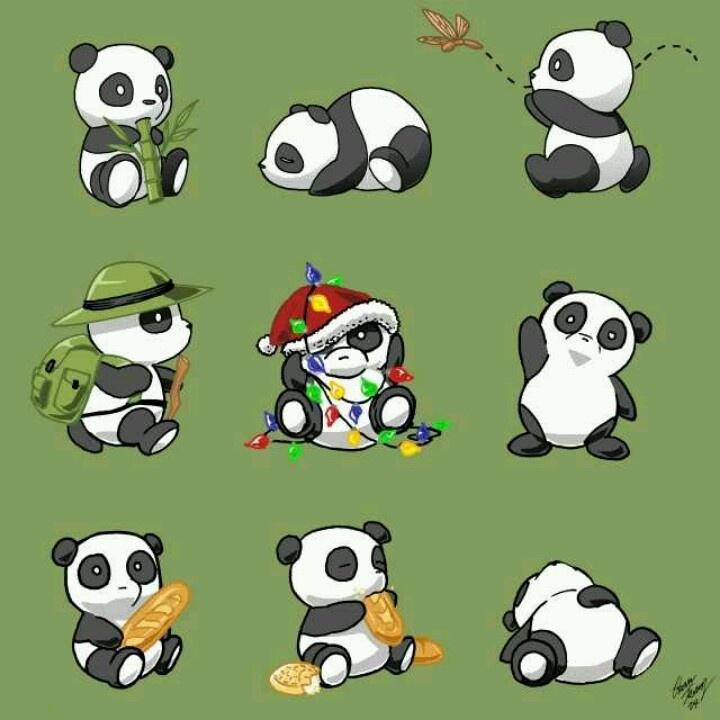 17 Best Ideas About Panda Drawing On Pinterest