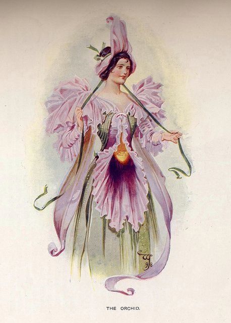 The OrchidArt Nouveau, Williams John, Iris Fairies, Fairies Dresses, Costumes Illustration, Vintage Rose, Flower Girls, John Charles, Charles Pitcher